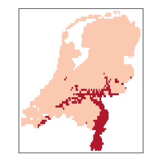 Agrostisvinealis_NL_C26-small.png